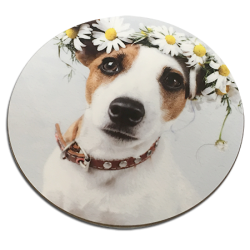 Personalised Round Coasters